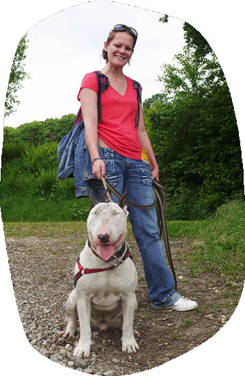 Os'cours - bull terrier balade educative